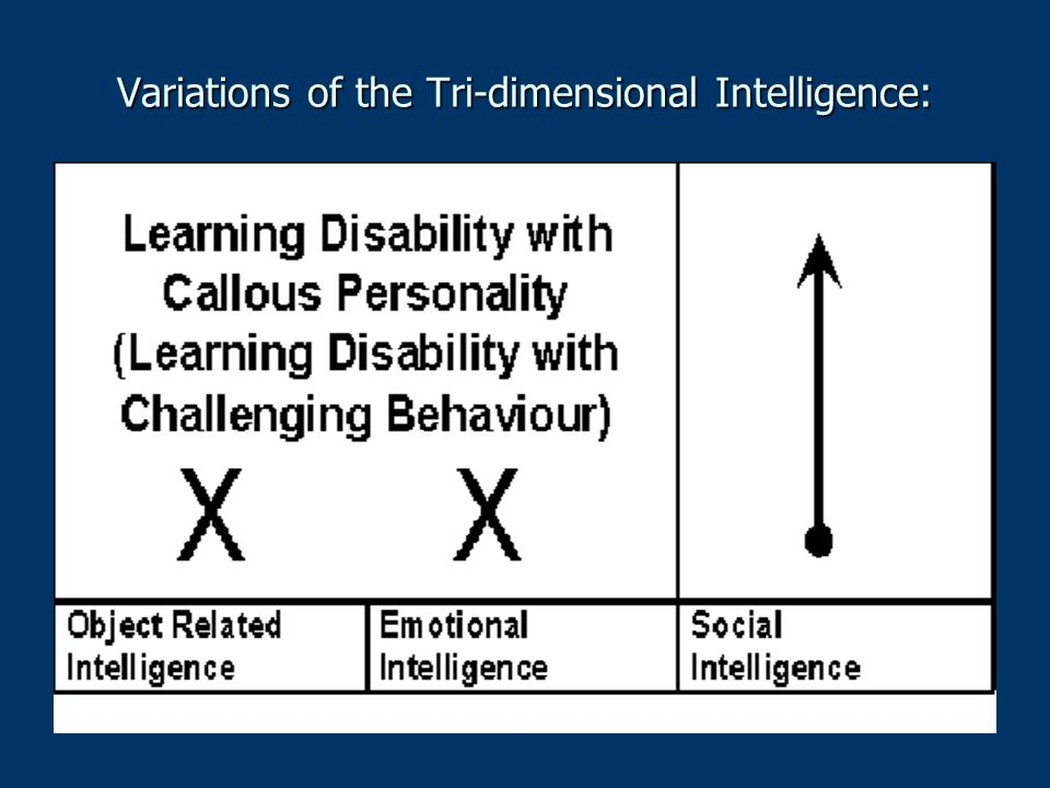 Variations of the Tri-dimensional Intelligence: