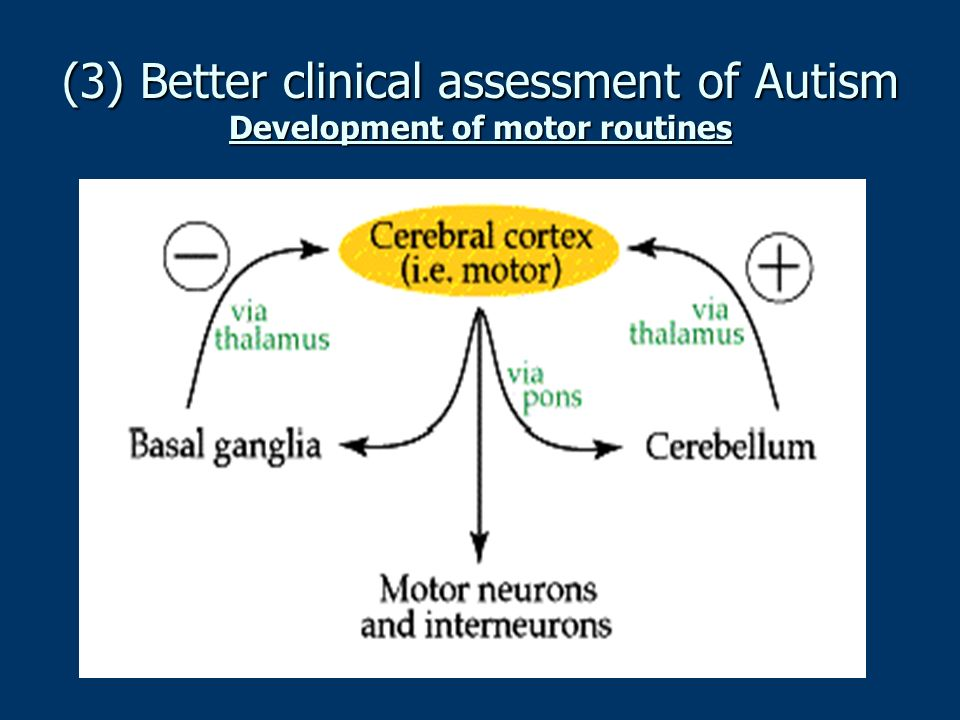 (3) Better clinical assessment of Autism Development of motor routines