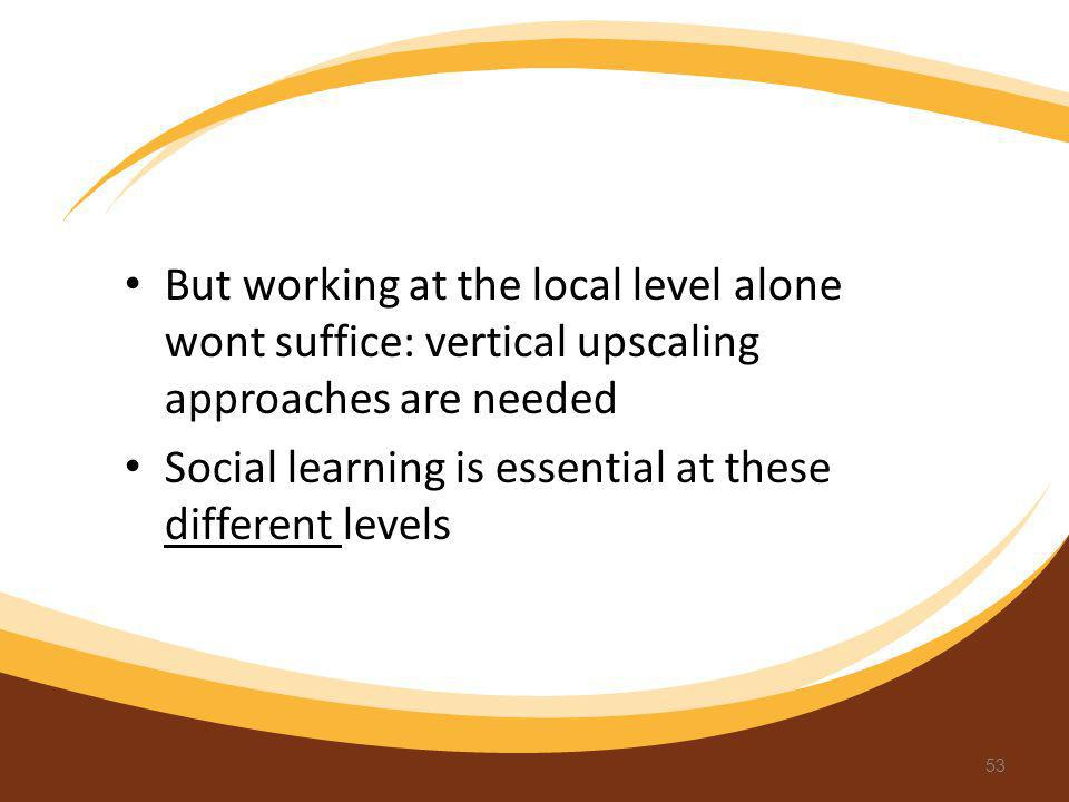 But working at the local level alone wont suffice: vertical upscaling approaches are needed