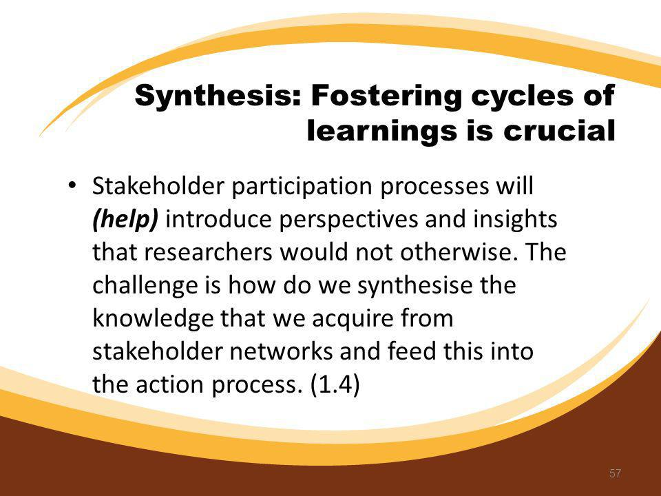 Synthesis: Fostering cycles of learnings is crucial