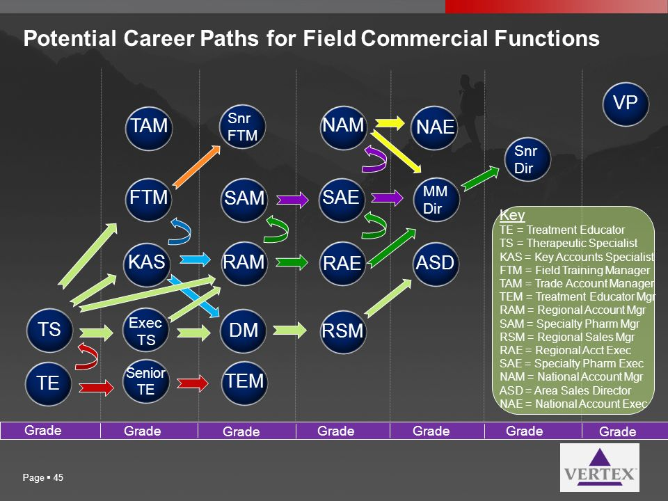 Potential Career Paths for Field Commercial Functions