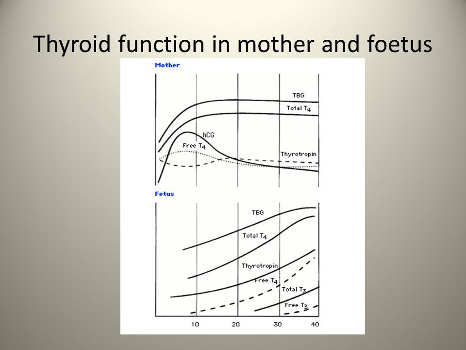 Thyroid function in mother and foetus