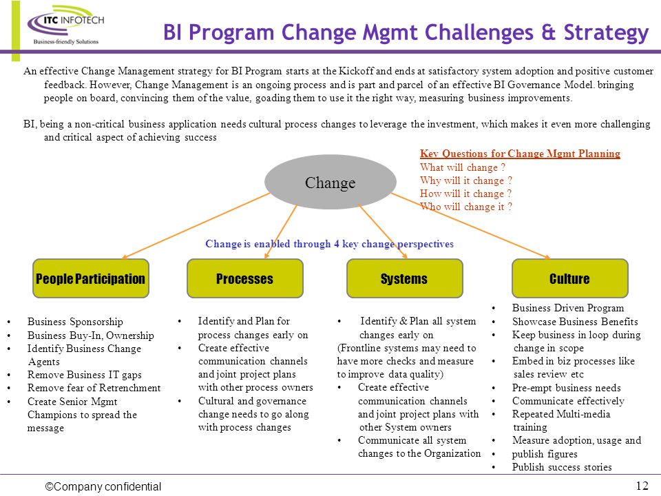 BI Program Change Mgmt Challenges & Strategy