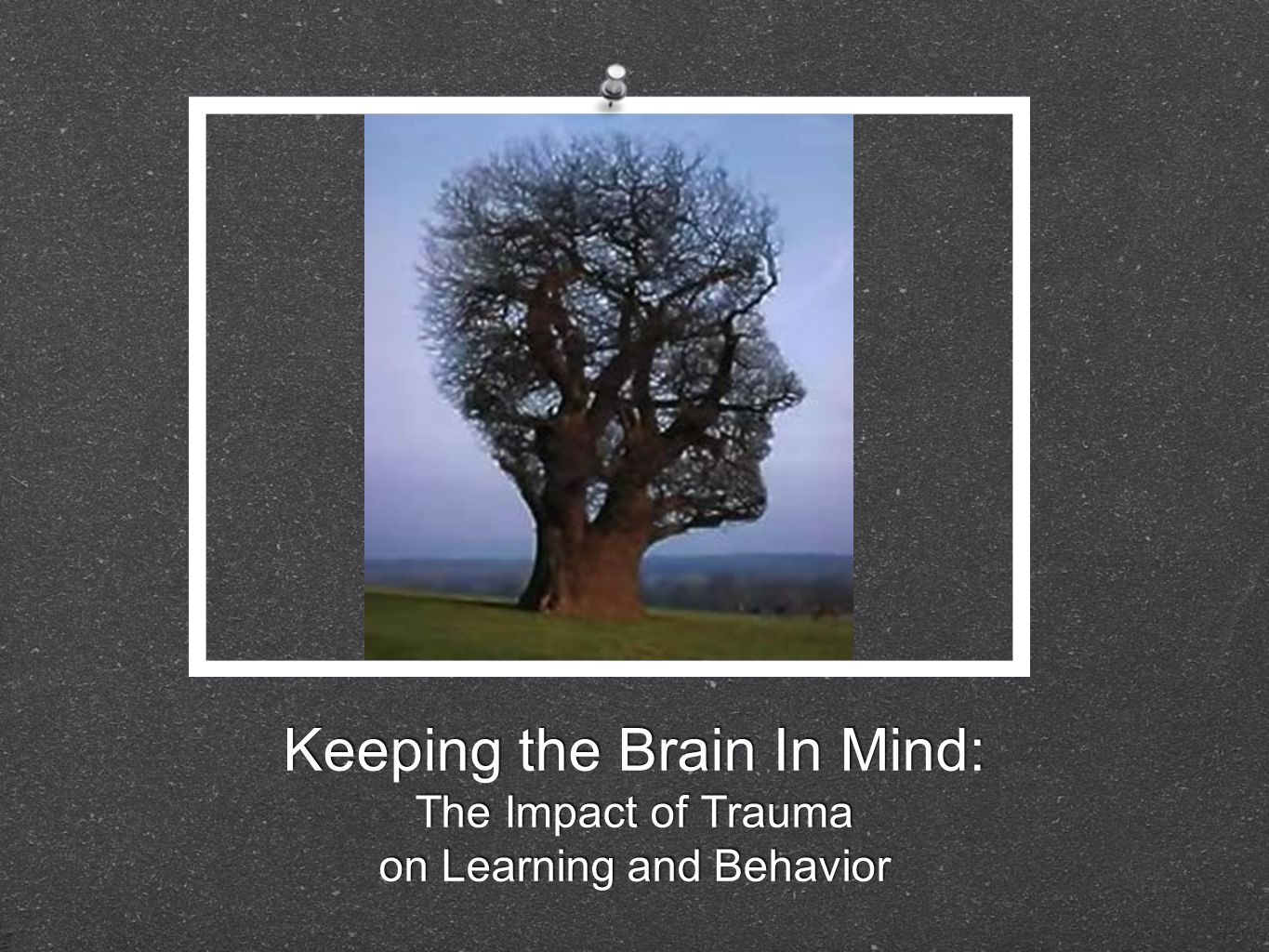 Keeping the Brain In Mind: The Impact of Trauma on Learning and Behavior