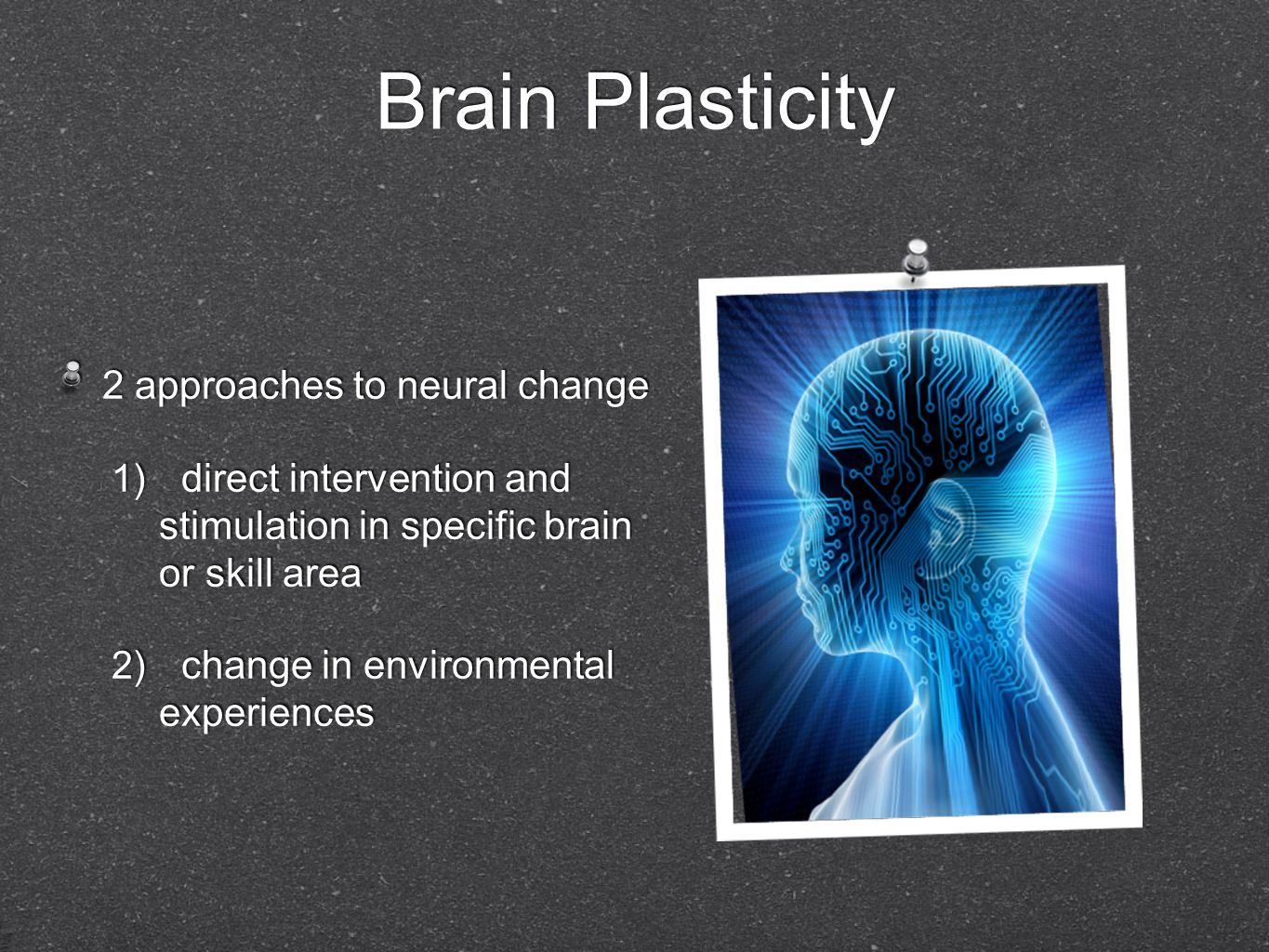 Brain Plasticity 2 approaches to neural change
