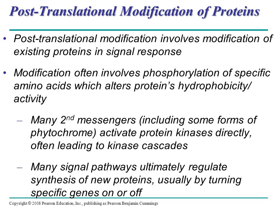 Post-Translational Modification of Proteins