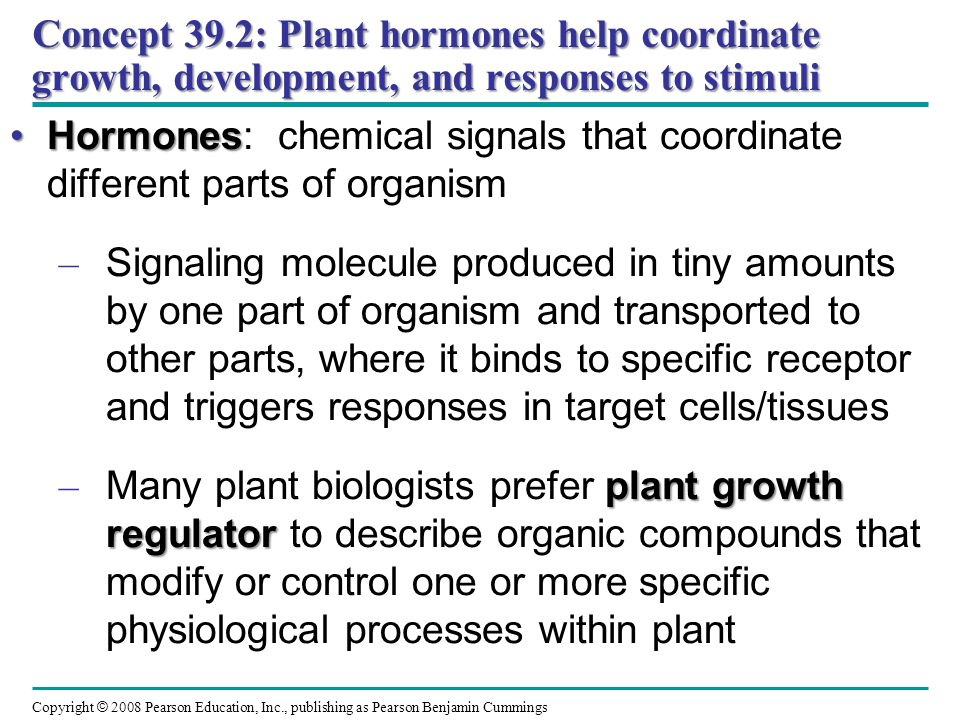 Concept 39.2: Plant hormones help coordinate growth, development, and responses to stimuli