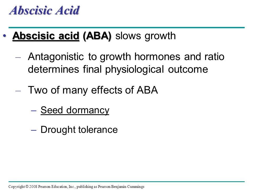 Abscisic Acid Abscisic acid (ABA) slows growth