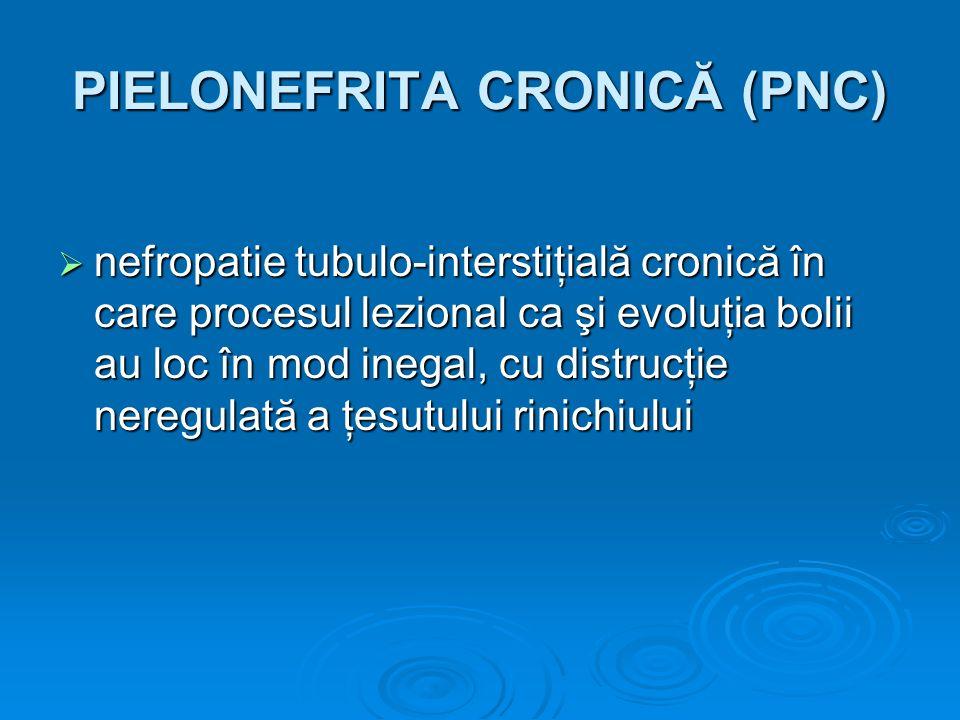 PIELONEFRITA CRONICĂ (PNC)
