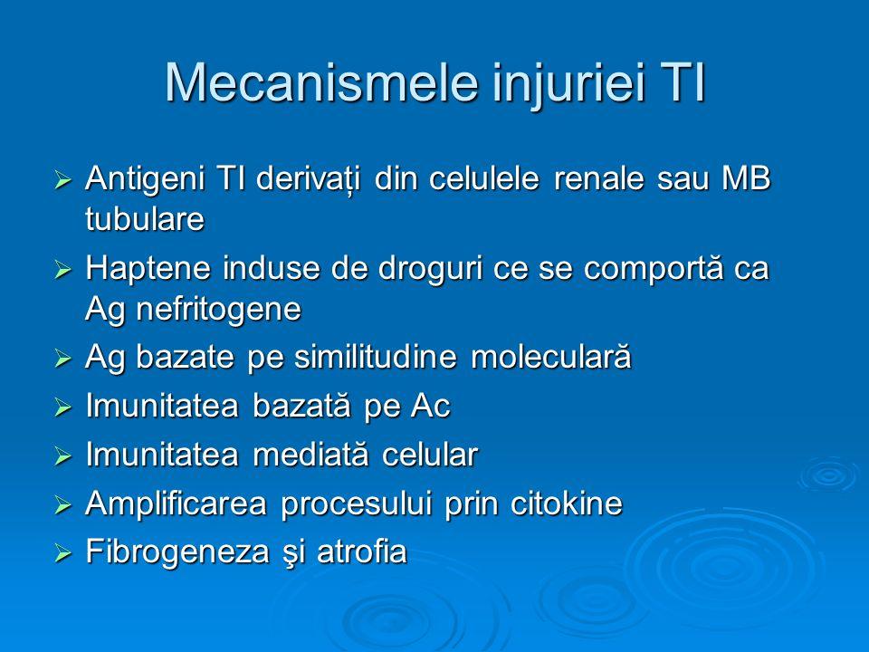 Mecanismele injuriei TI