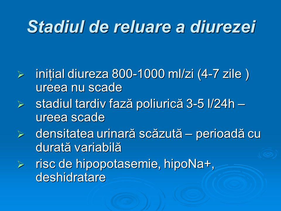 Stadiul de reluare a diurezei