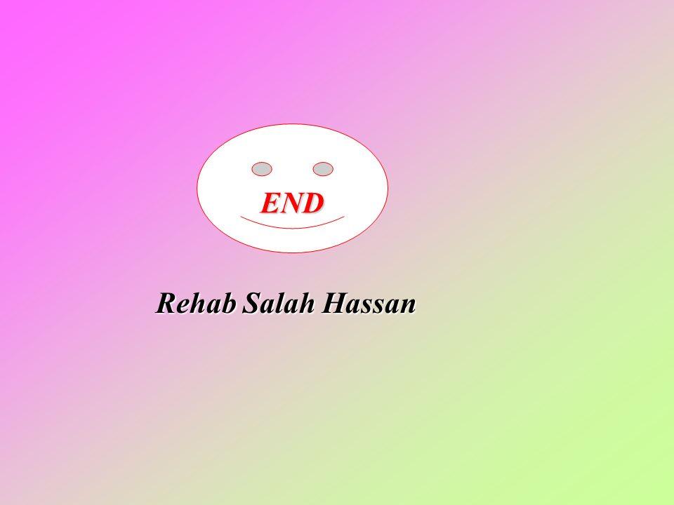 END Rehab Salah Hassan