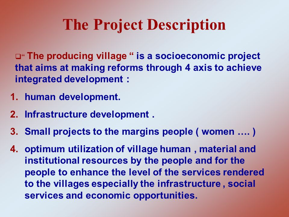 The Project Description