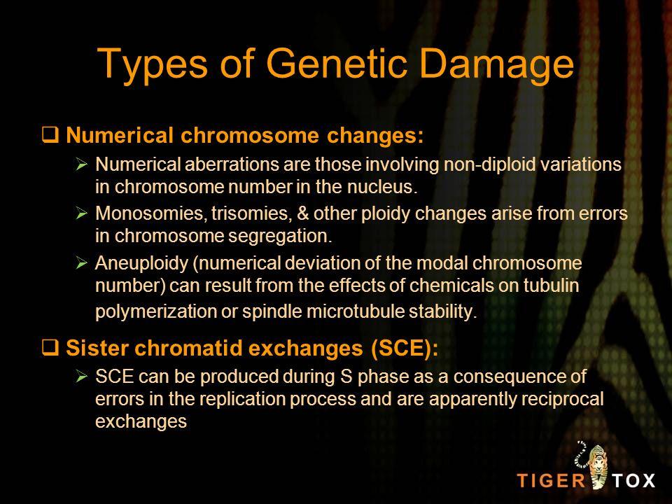 Types of Genetic Damage