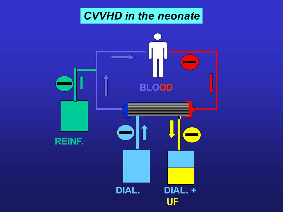 CVVHD in the neonate BLOOD REINF. DIAYSAT E DIAL. DIAL. + UF