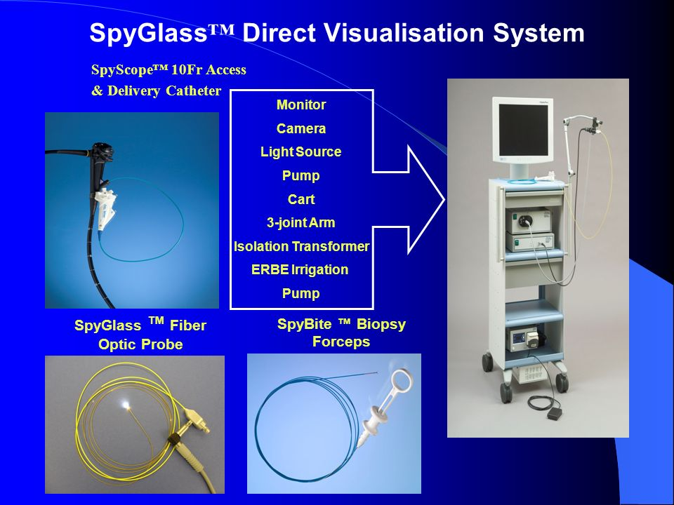 SpyGlass™ Direct Visualisation System