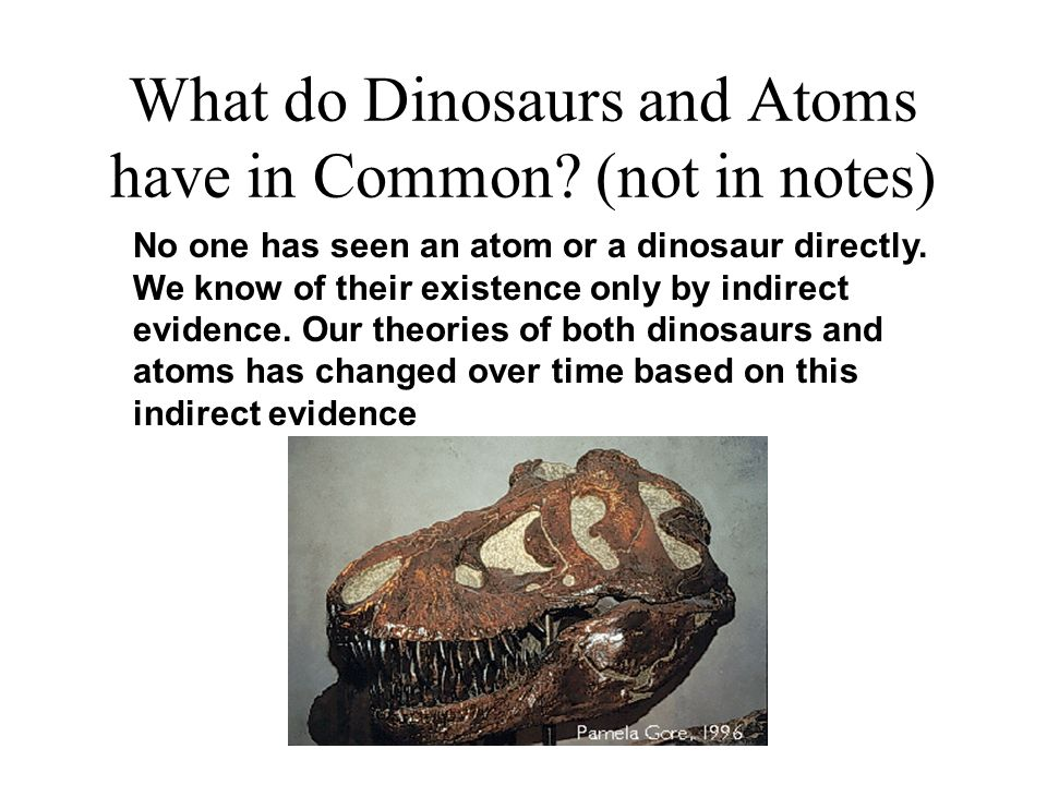 What do Dinosaurs and Atoms have in Common (not in notes)