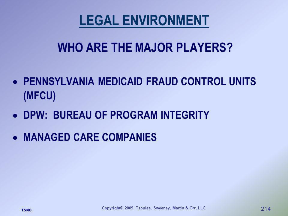 LEGAL ENVIRONMENT WHO ARE THE MAJOR PLAYERS