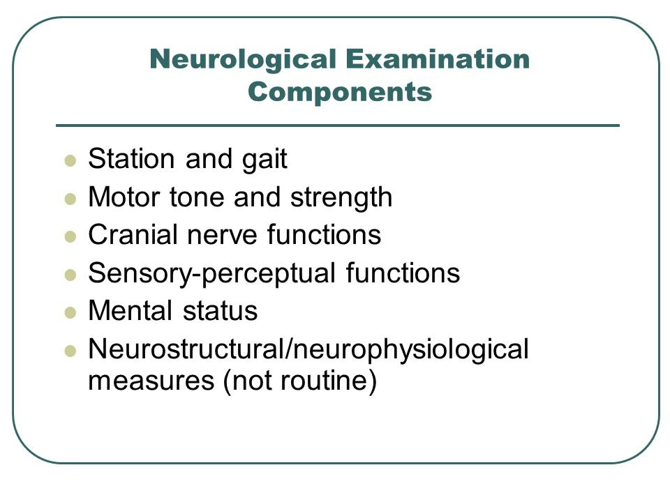 Neurological Examination Components