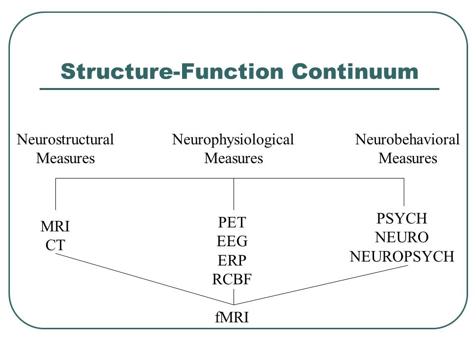 Structure-Function Continuum
