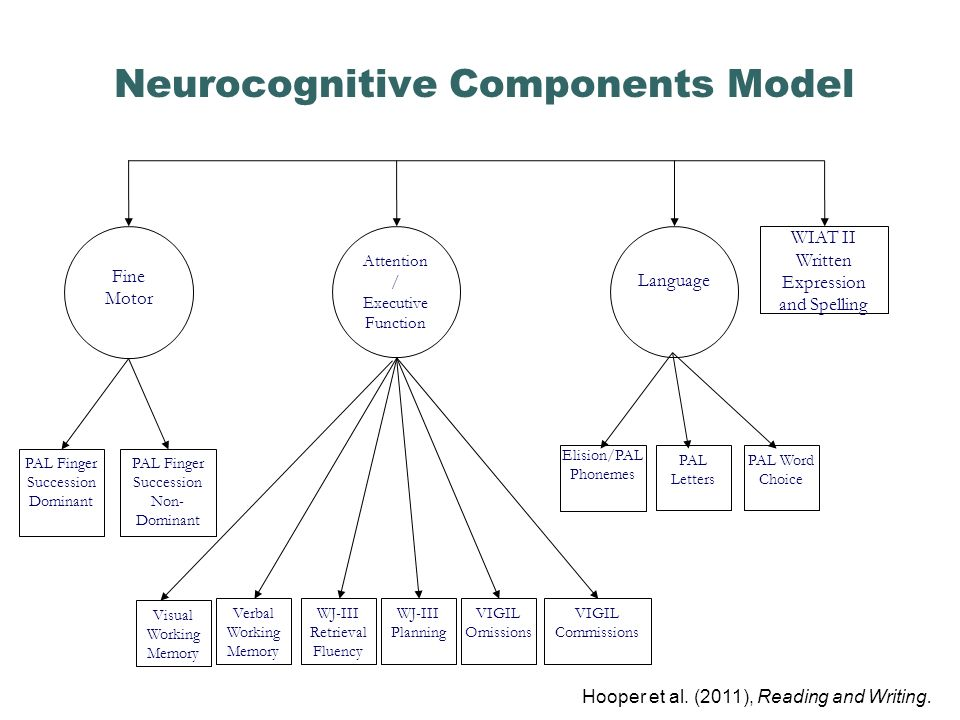 Neurocognitive Components Model