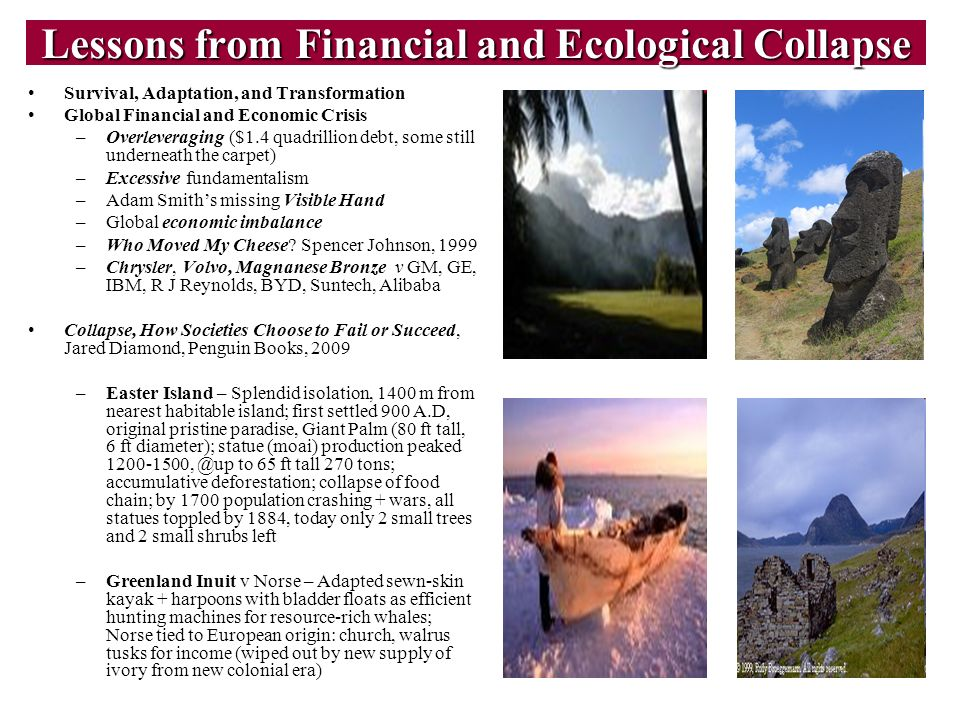 Lessons from Financial and Ecological Collapse