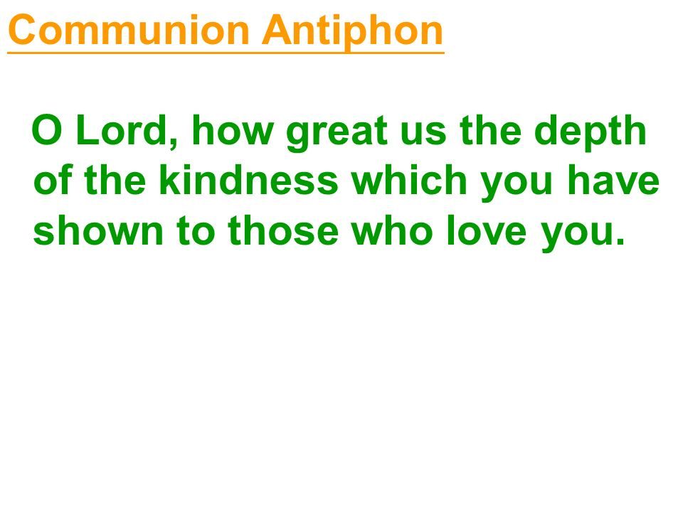 Communion Antiphon O Lord, how great us the depth of the kindness which you have shown to those who love you.