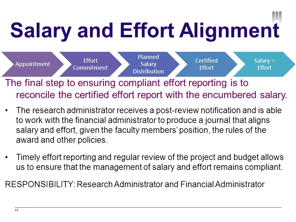 Salary and Effort Alignment