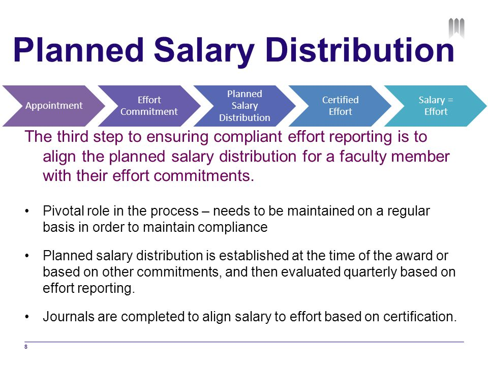 Planned Salary Distribution