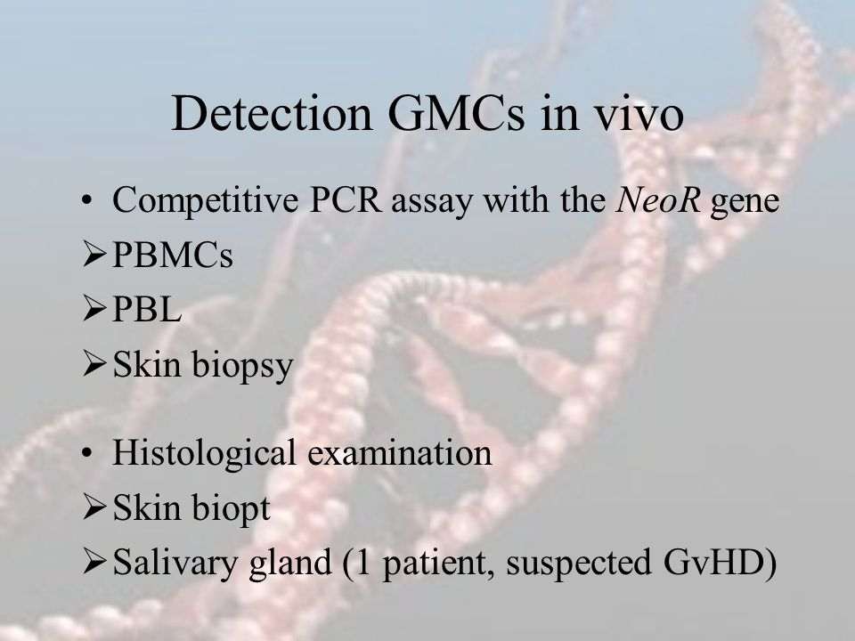 Detection GMCs in vivo Competitive PCR assay with the NeoR gene PBMCs