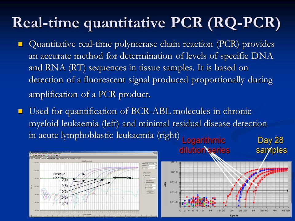 Real-time quantitative PCR (RQ-PCR)