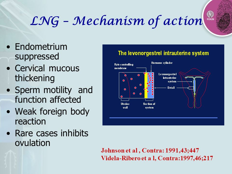 LNG – Mechanism of action