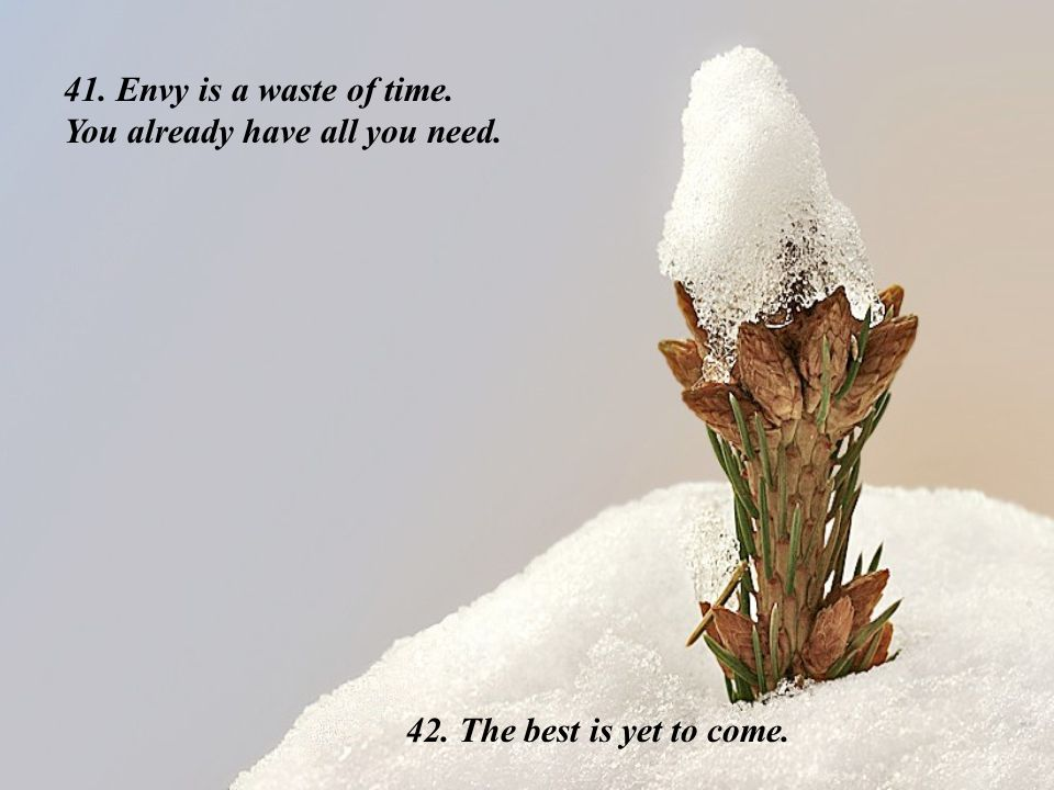 41. Envy is a waste of time. You already have all you need. 42. The best is yet to come.