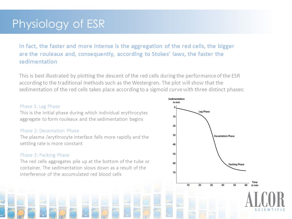 Physiology of ESR