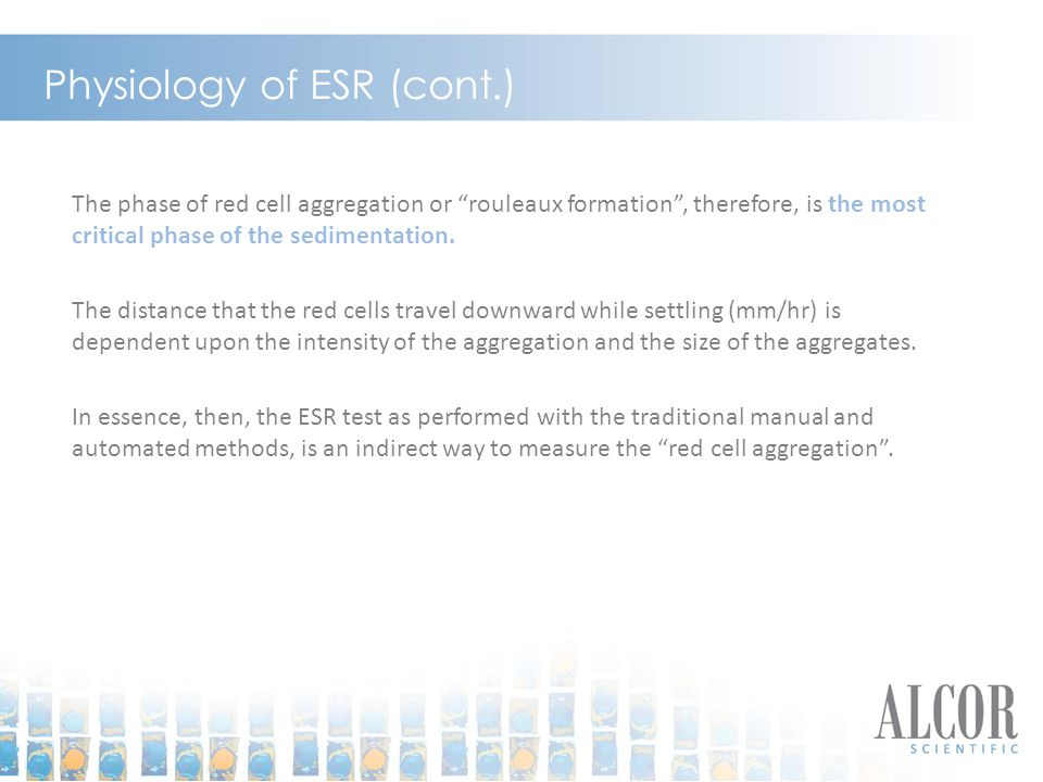 Physiology of ESR (cont.)