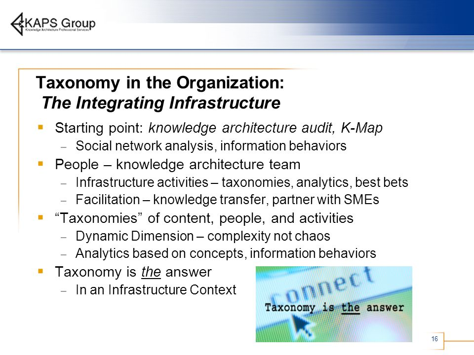 Taxonomy in the Organization: The Integrating Infrastructure
