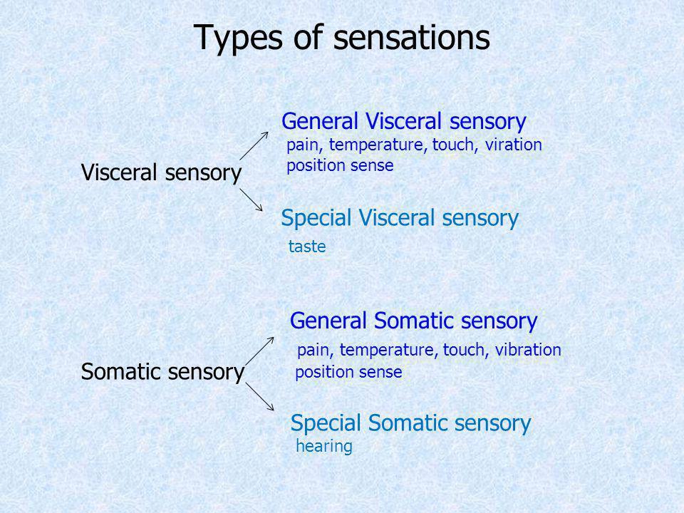 Types of sensations General Visceral sensory Visceral sensory