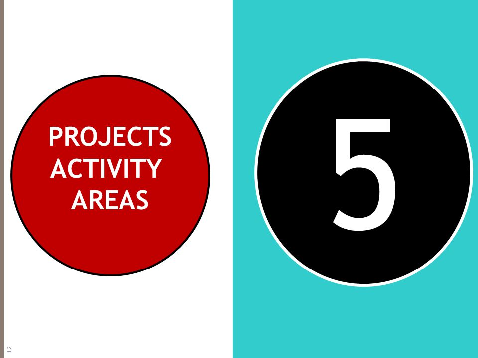 5 PROJECTS ACTIVITY AREAS 12