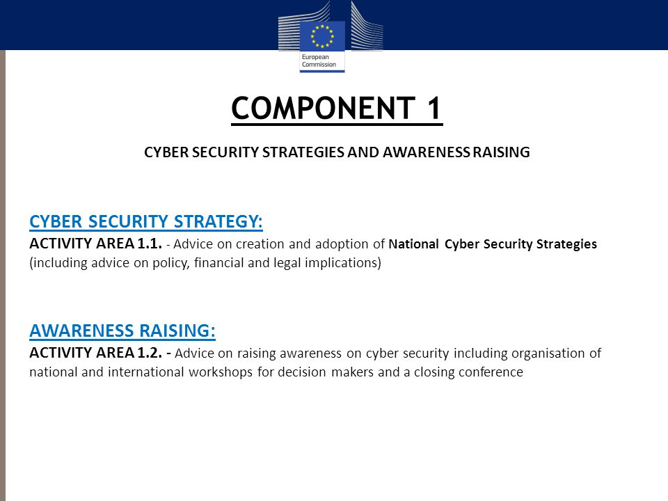 CYBER SECURITY STRATEGIES AND AWARENESS RAISING