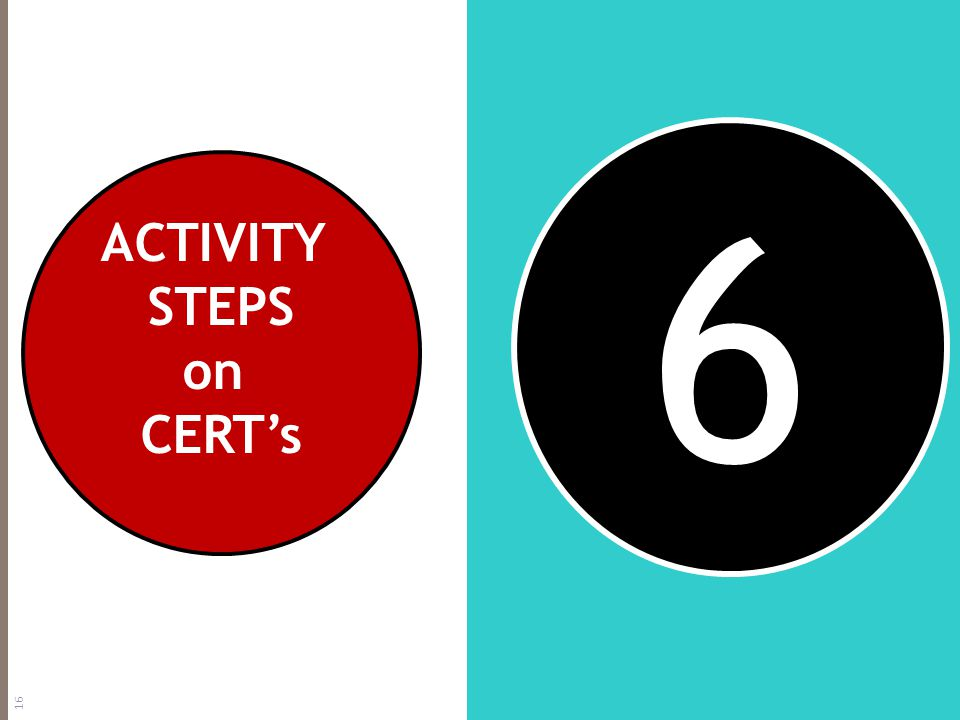 6 ACTIVITY STEPS on CERT's 16