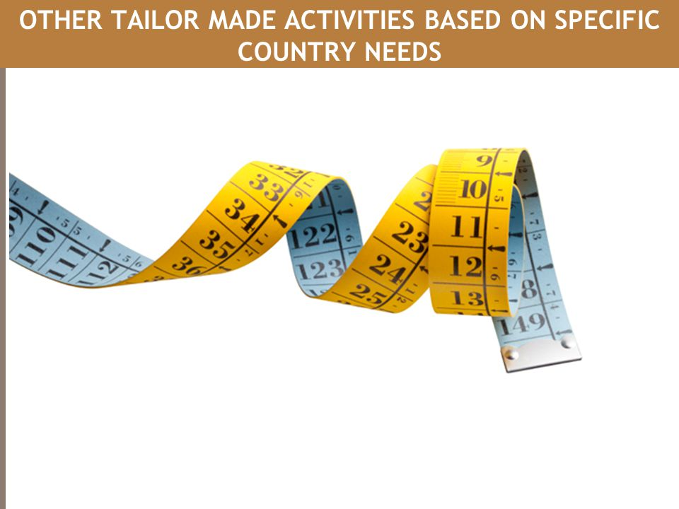 OTHER TAILOR MADE ACTIVITIES BASED ON SPECIFIC COUNTRY NEEDS