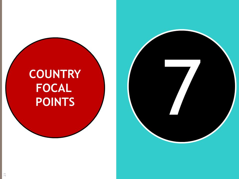 7 COUNTRY FOCAL POINTS 23