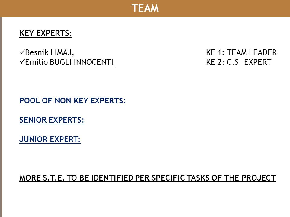 TEAM KEY EXPERTS: Besnik LIMAJ, KE 1: TEAM LEADER
