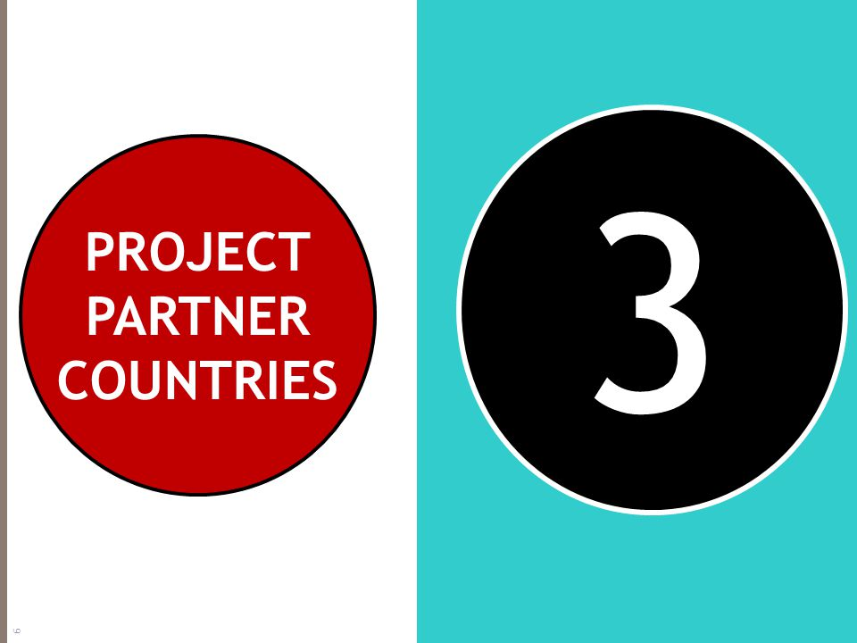 3 PROJECT PARTNER COUNTRIES 6
