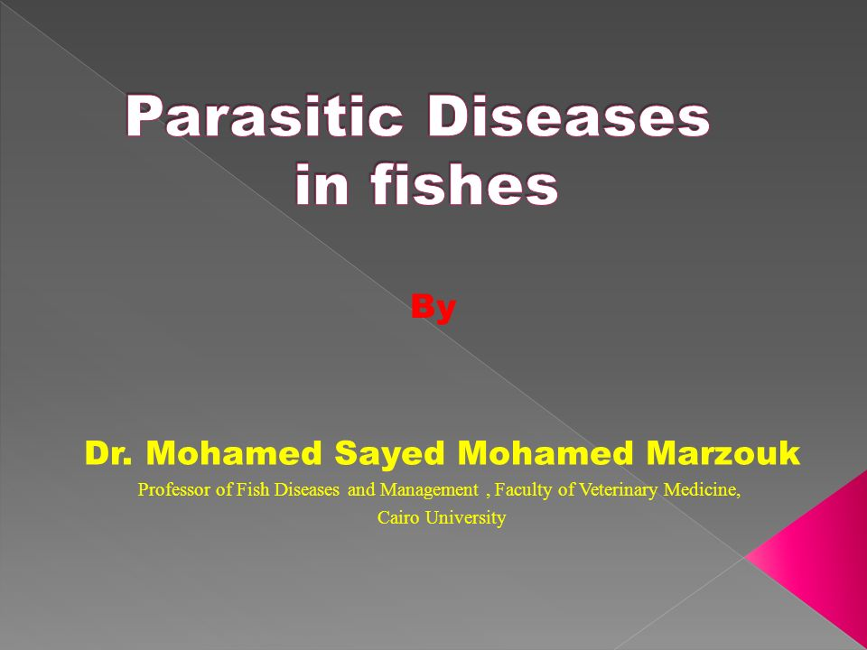 Parasitic Diseases in fishes