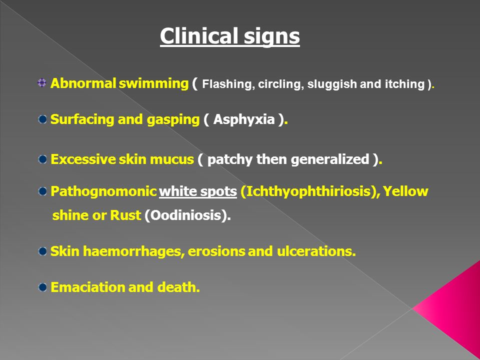 Clinical signs Abnormal swimming ( Flashing, circling, sluggish and itching ). Surfacing and gasping ( Asphyxia ).