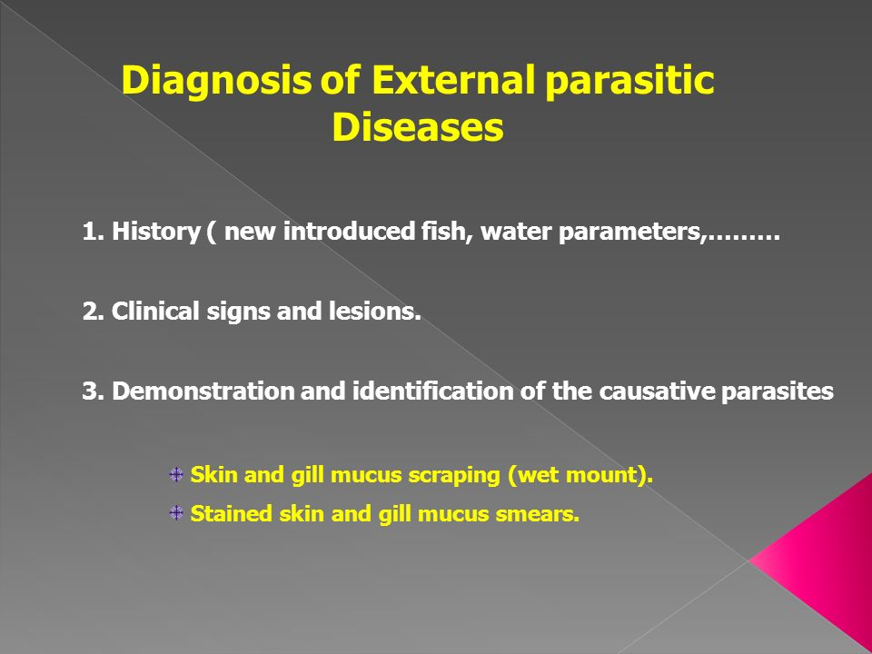 Diagnosis of External parasitic Diseases