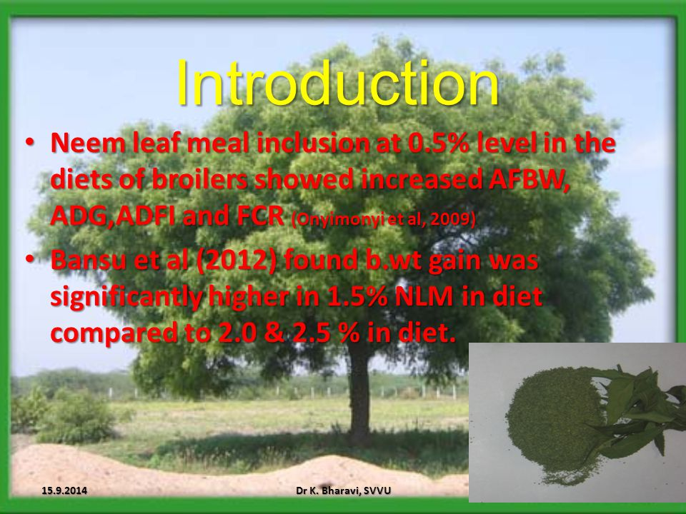 Introduction Neem leaf meal inclusion at 0.5% level in the diets of broilers showed increased AFBW, ADG,ADFI and FCR (Onyimonyi et al, 2009)