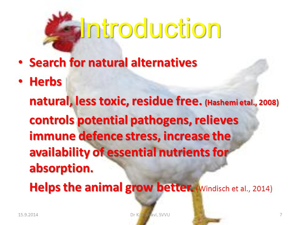 Introduction Search for natural alternatives Herbs