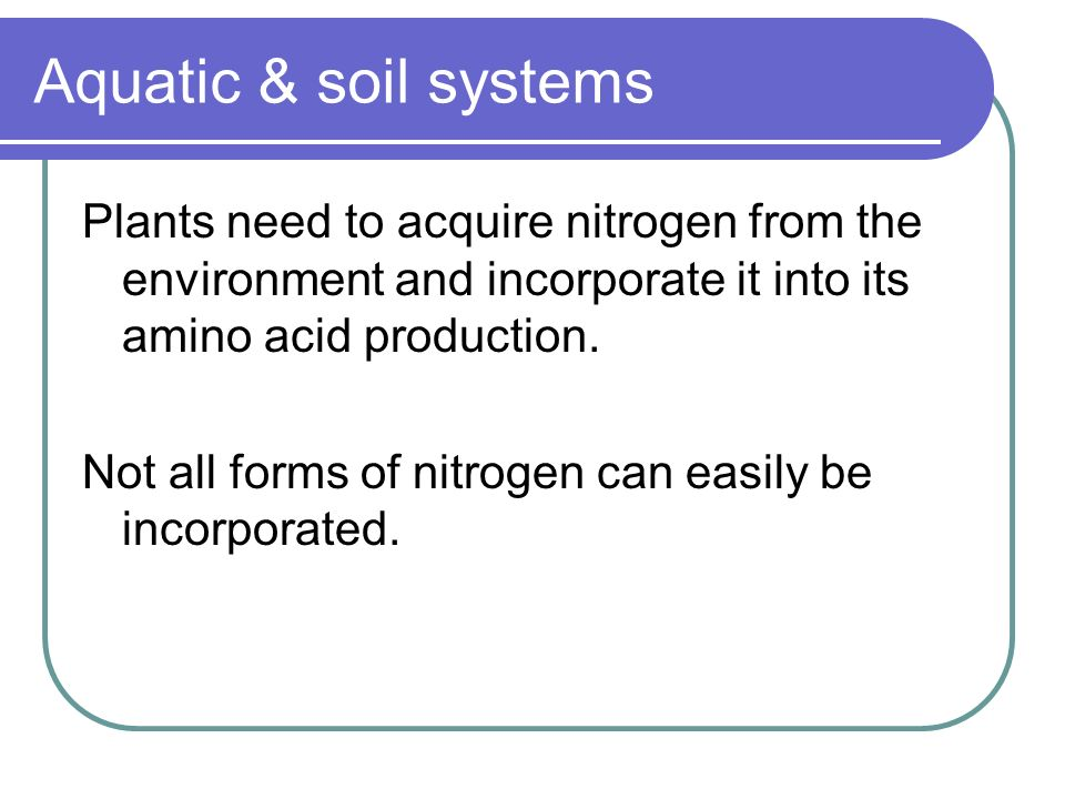 Aquatic & soil systems Plants need to acquire nitrogen from the environment and incorporate it into its amino acid production.